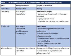 Tabel-1-2-300x237 Productinformatie